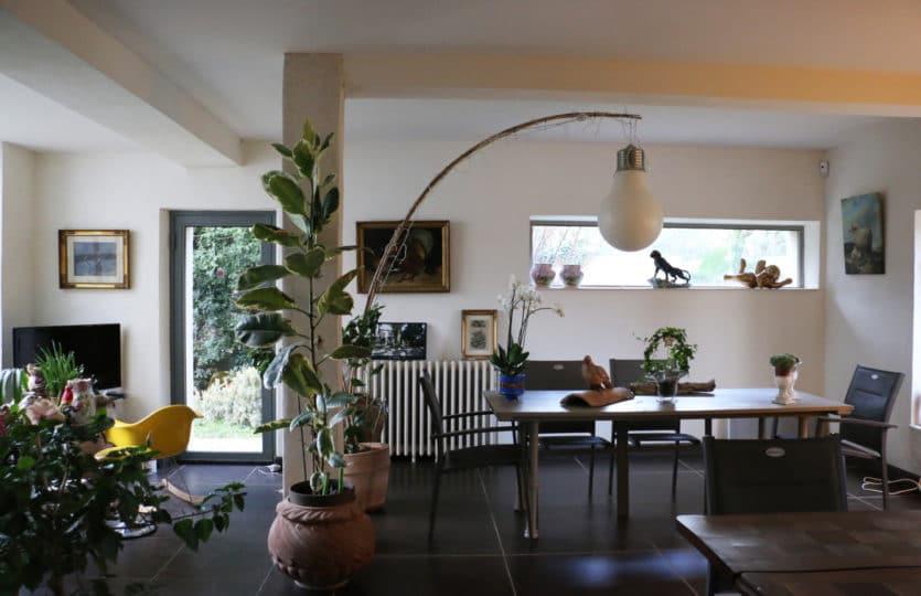 agent immobilier, investissement locatif, Camargue, Alpilles